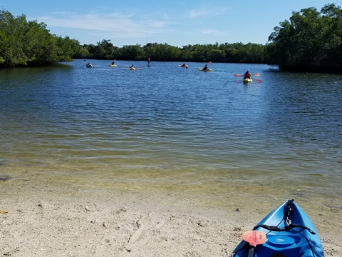 paddle Great Calusa Blueway, kayak, canoe