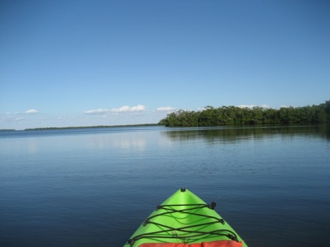 paddle Sanibel, Tarpon Bay, Commodore Creek, Great Calusa Blueway, kayak, canoe