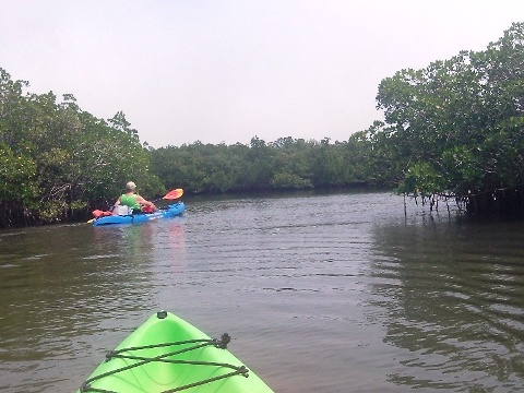 Paddle Callalisa Creek New Smyrna Beach Kayak Canoe