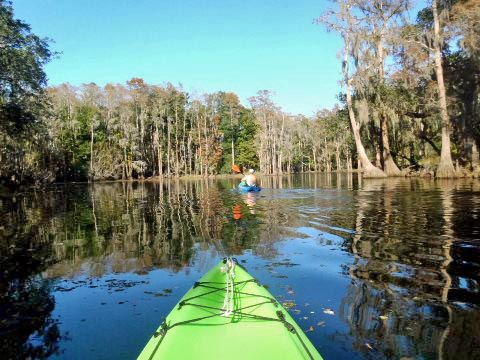 paddling Shingle Creek, Steffee Landing to Pleasant Hill Rd.