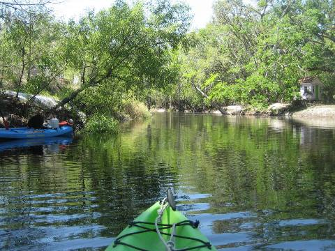 paddling Shingle Creek, Steffee Landing to Babb Park