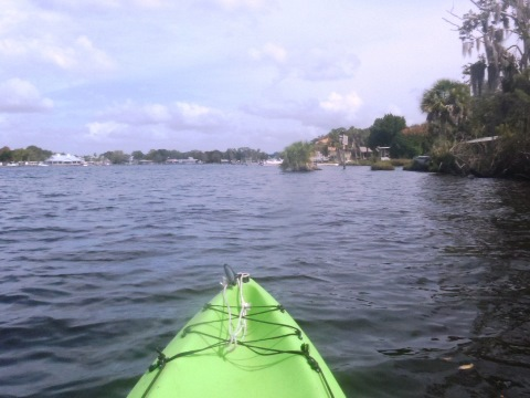 paddle Homosassa Springs, Homosassa River, kayak, canoe
