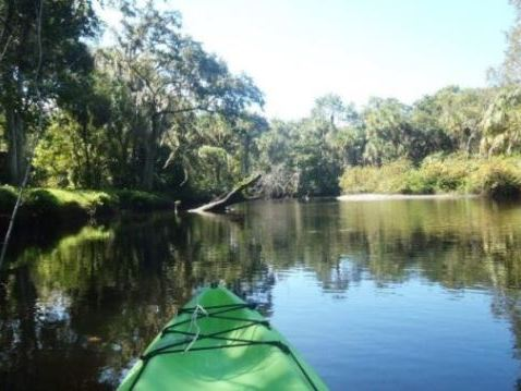 paddling Little Manatee River, kayak, canoe