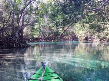 Paddle Weeki Wachee River