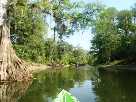 Paddle West-Central Florida, Withlacoochee River