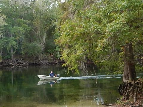 paddling Santa Fe River, Hollingsworth Bluff, kayak, canoe