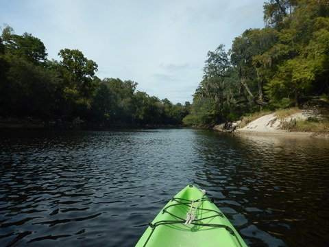 paddling Suwannee River State Park