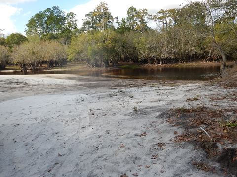 paddling Suwannee River, Griffis Fish Camp