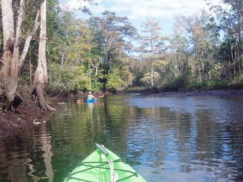 paddle Wekiva River, Levy County FL