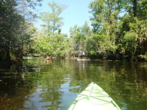 paddle Loxahatchee River, Riverbend Park, kayak, canoe