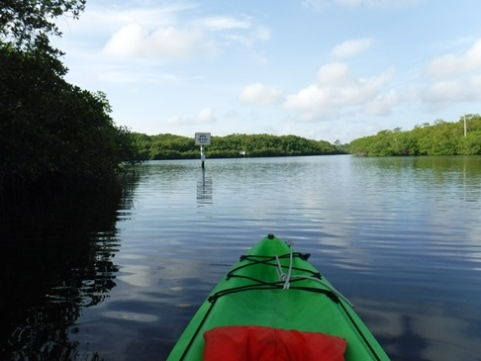 Paddling Loxahatchee River, Jonathan Dickinson SP, kayak, canoe