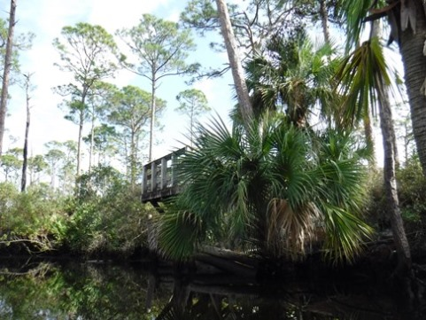 Paddling Loxahatchee, Kitching Creek, kayak, canoe