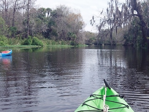 Shell Creek, South FL paddling
